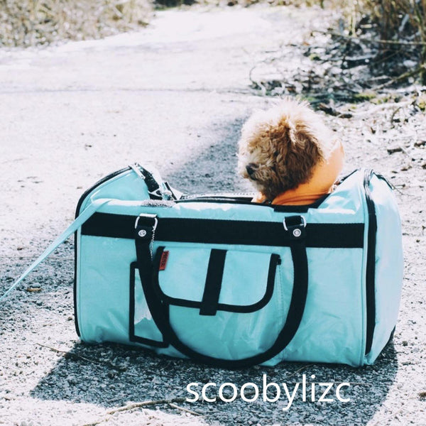 scoobylizc in Prefer Pets Hideaway Aqua Duffel Pet Carrier