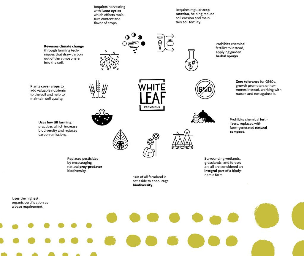 biodynamic foods - purest food infographic