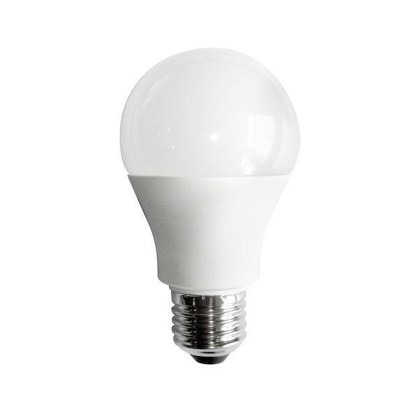 A19 Simply Conserve 9W Dimmable Warm White Indoor (12 pack)