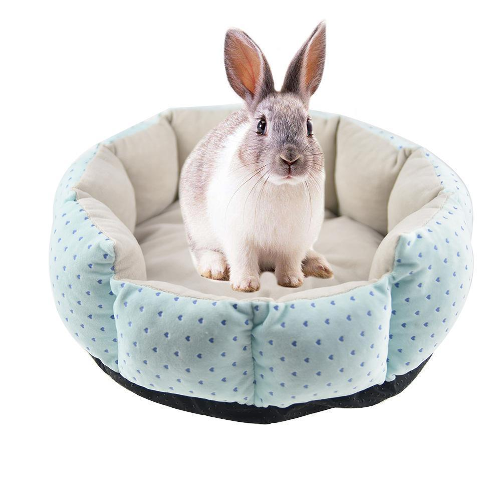 Best Rabbit Supplies & Products (Free Shipping) | Bunny ...