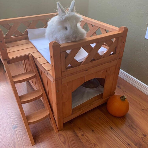 cute houses for rabbits or bunnies - bunny supply co