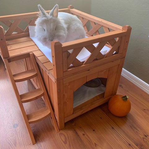 best houses for pet rabbits or bunnies with free shipping - bunny supply co