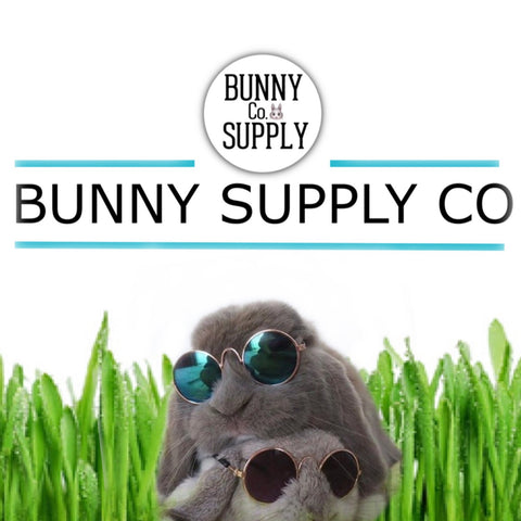 mini sunglasses for rabbits or bunnies