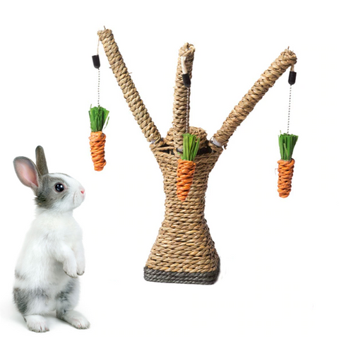 fun toys for pet bunnies or rabbits to prevent boredom or play