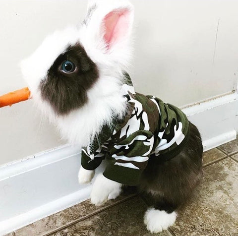 cute clothes for bunnies to wear - costumes for pet rabbits for sale online 2019