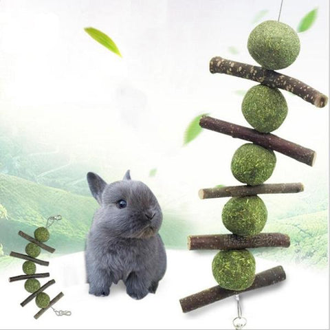 hanging treat toy for bunnies or rabbits 2019 - Bunny supply Co.