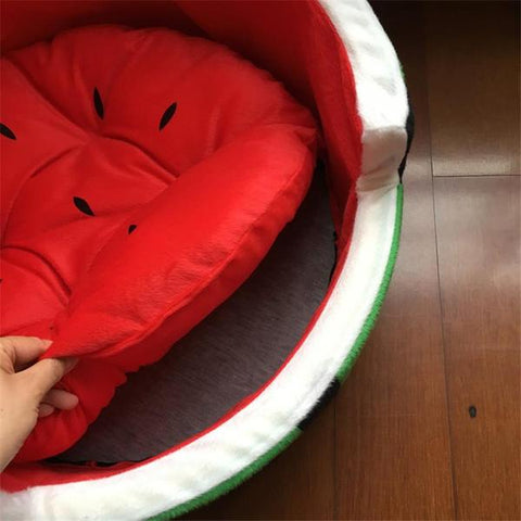 small pet bed that looks like a watermelon