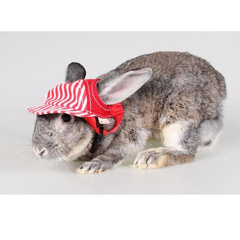 small hats for rabbits to wear for sale online