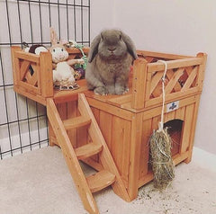 play fort for pet rabbits bunnies