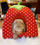 Indoor Rabbit House (Best Seller) - Bunny Supply Co.