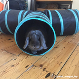 Classic 3-Way Rabbit Runner Tunnel - Bunny Supply Co.