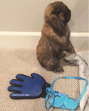 Grooming Glove for Shedding Bunnies & Rabbits - Bunny Supply Co.