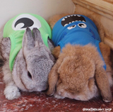 Themed Outfits for Bunnies & Rabbits - Bunny Supply Co.
