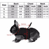 Rabbit Harness and Leash (Best Selling) - Bunny Supply Co.