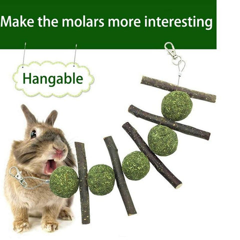 Hanging Molar Treat Toy for Bunnies & Rabbits - Bunny Supply Co.
