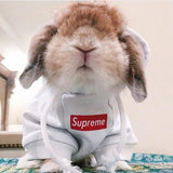 S'preme Hype Hoodie for Bunnies & Rabbits - Bunny Supply Co.