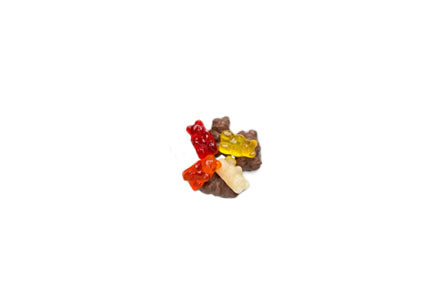 CHOCOLATE COVERED GUMMY BEARS (8oz.)