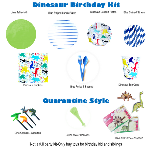 Dinosaur Quarantine Birthday Kit