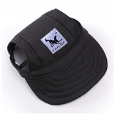 Bewitching Dog Hat Black / S Hat