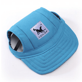 Bewitching Dog Hat Blue / S Hat