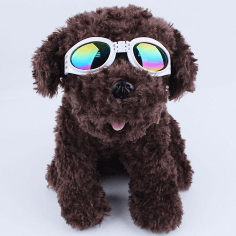 Dog UV-Protective Sunglasses White Sunglasses