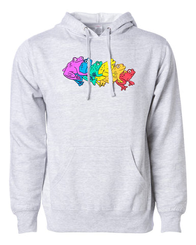 Rainbow Gay Frog Hooded Sweatshirt