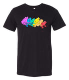 Rainbow Gay Frog T-Shirt (Tri-Blend)