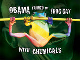"Obama Made My Frog Gay Poster! (18X24"")"