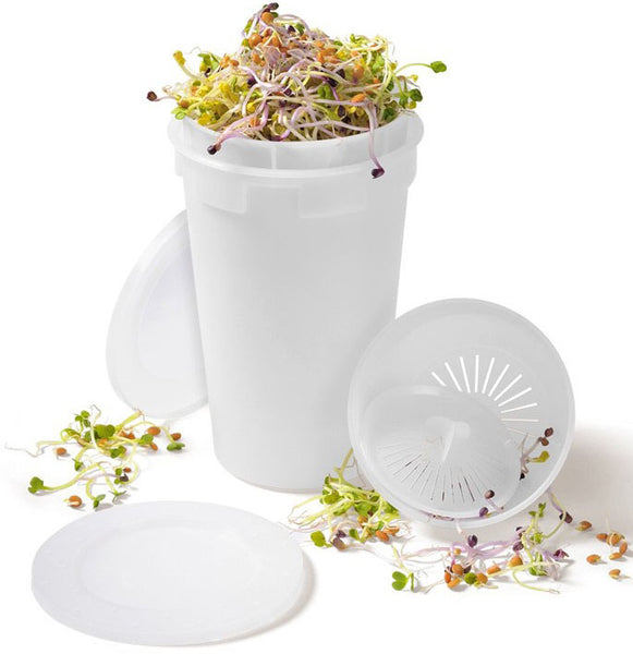 Sproutbox-Grow Your Own Food at Home