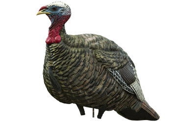 Avian-X LCD - Jake Quarter Strut Decoy