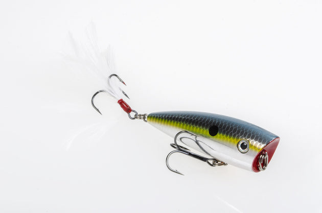 Strike King KVD Splash Jr.