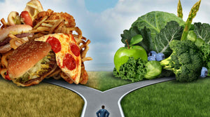 Why is Nutrition Important | Vitality and Wellness