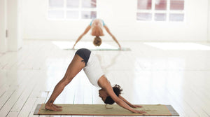 Downward Dogs Develop Elephant-Like Memory