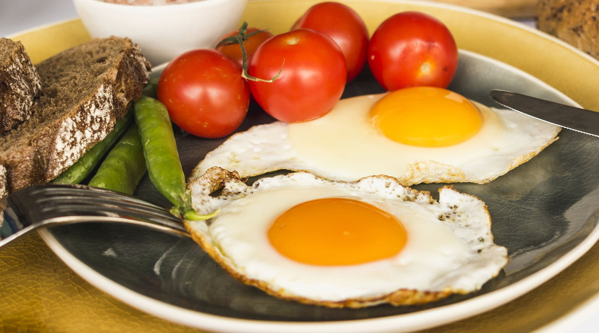 Egg-Citing News For Metabolic Disease! | Vitality and Wellness