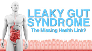 Leaky Gut Syndrome The Missing Health Link? Vitality and Wellness