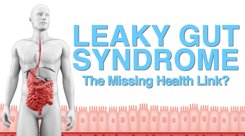 Leaky Gut Syndrome The Missing Health Link?