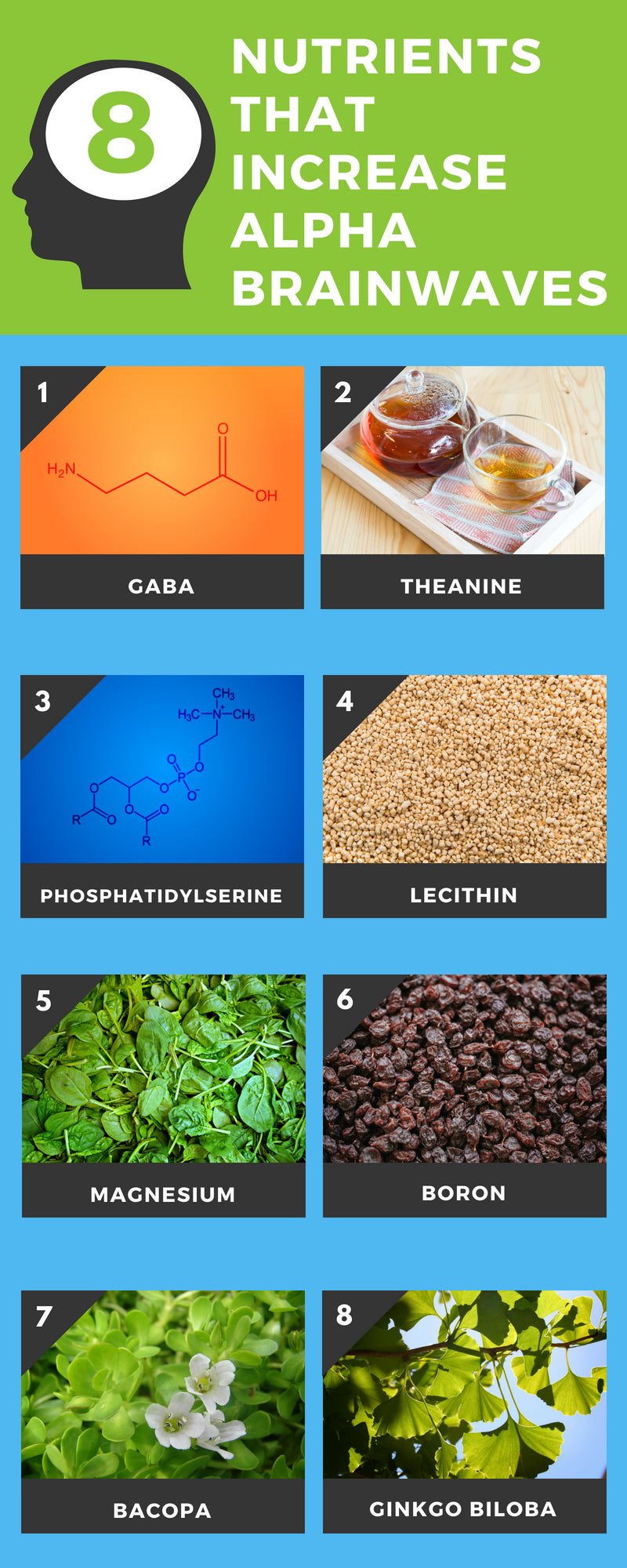 8 Key Nutrients That Increase Alpha Brainwaves Infographic