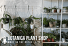 Made in the Rocket City: Botanica Plant Shop