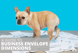 Business Envelope Dimensions: 10 Common Envelope Sizes Used at the Office