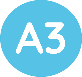 a3 size icon