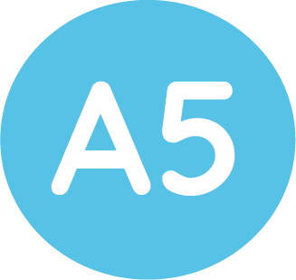 a5 size icon
