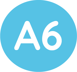 a6 size icon
