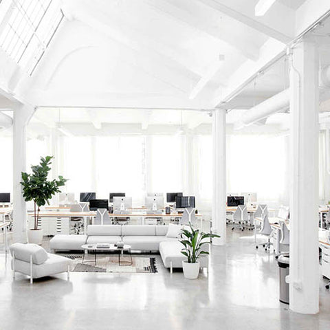 White color psychology in the workplace