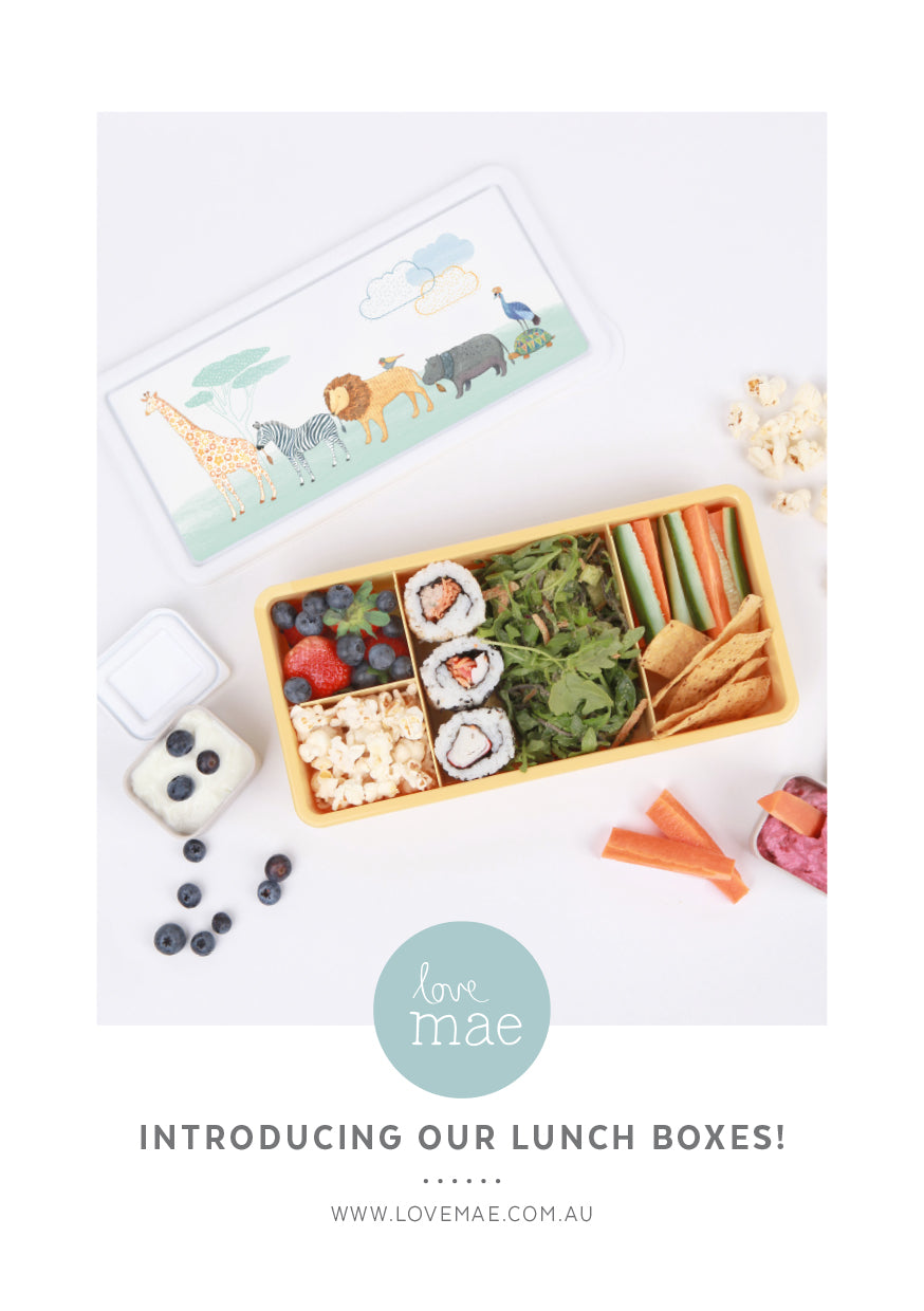 Introducing our New Love Mae Kids Lunch Boxes