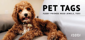 PET TAGS HEADER