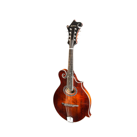 Eastman T49/V-AMB Thinline Semi-Hollow Electric-Amber