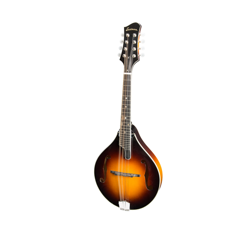 Collings MT Mandolin 1 3/16th Nut