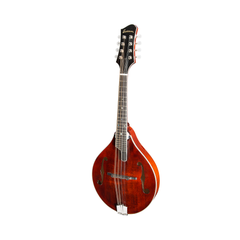 Eastman MD805 A-Style F-Hole Mandolin