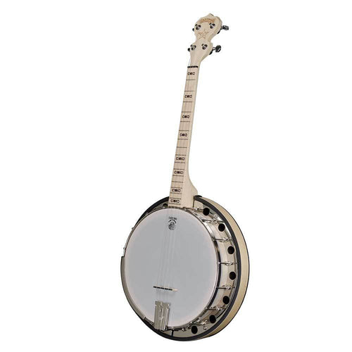 Deering Goodtime Two 17-Fret Tenor Banjo with Resonator