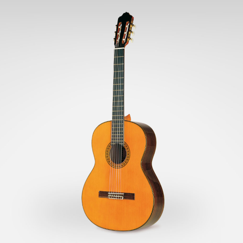 Esteve Model 8 Cedar/Rosewood Classical Guitar